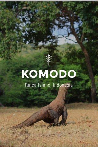 KOMODO Rinca Island, Indonesia