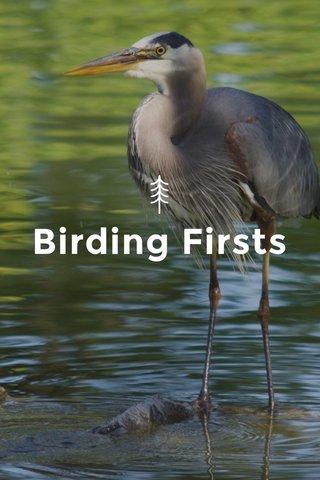 Birding Firsts