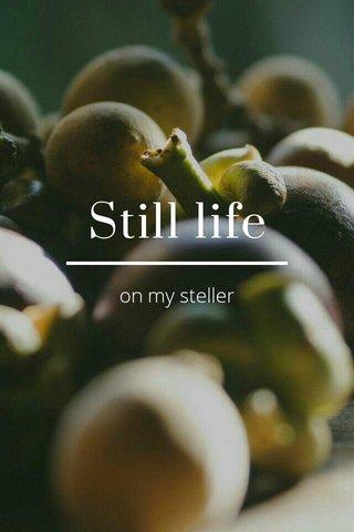 Still life on my steller