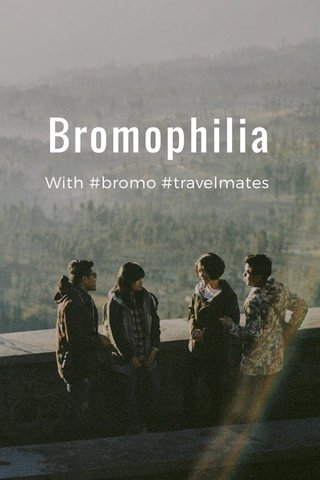 Bromophilia With #bromo #travelmates