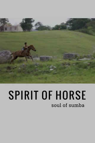 SPIRIT OF HORSE soul of sumba