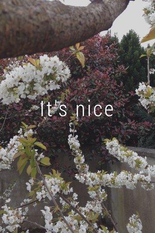 It's nice