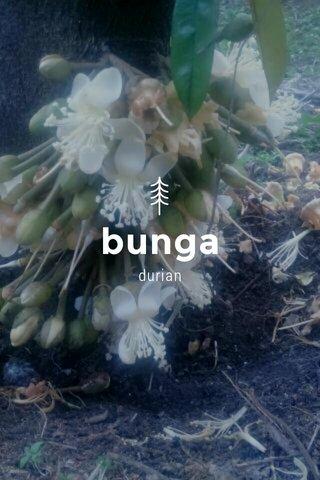 bunga durian