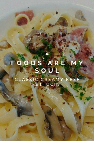 FOODS ARE MY SOUL CLASSIC CREAMY BEEF FETTUCINI