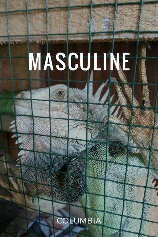 MASCULINE COLUMBIA