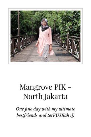 Mangrove PIK - North Jakarta