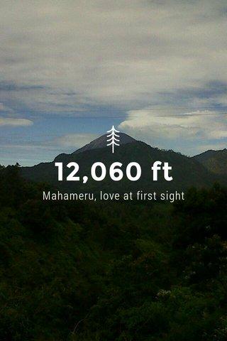 12,060 ft Mahameru, love at first sight