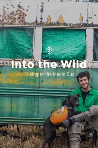 Into the Wild Hiking to the Magic Bus