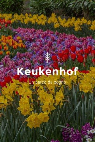 Keukenhof Un parco da sogno