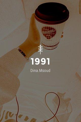 1991 Dina.Msoud