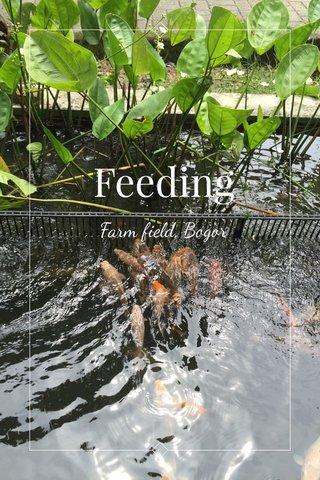 Feeding Farm field, Bogor