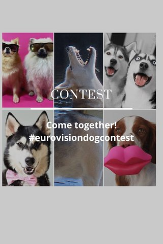 CONTEST Come together! #eurovisiondogcontest
