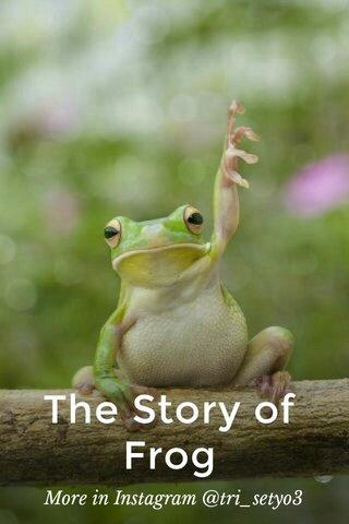 The Story of Frog More in Instagram @tri_setyo3