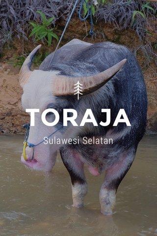 TORAJA Sulawesi Selatan