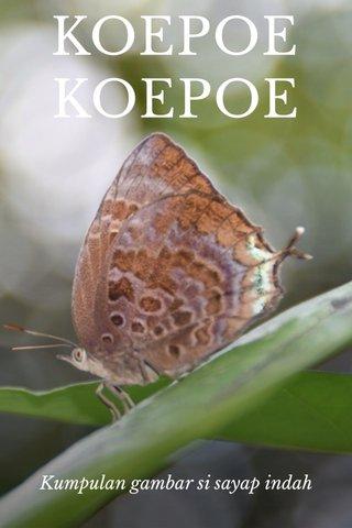 KOEPOE KOEPOE Kumpulan gambar si sayap indah