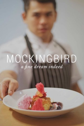 MOCKINGBIRD a fine dream indeed
