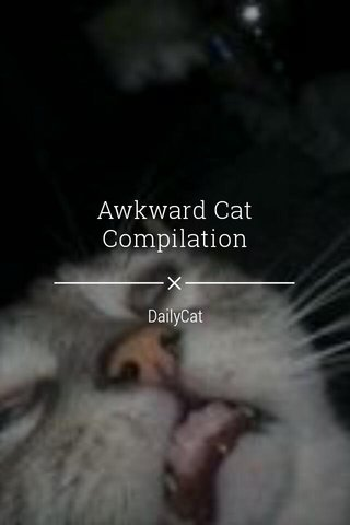 Awkward Cat Compilation DailyCat