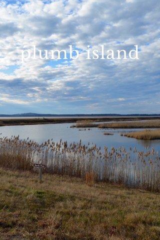 plumb island