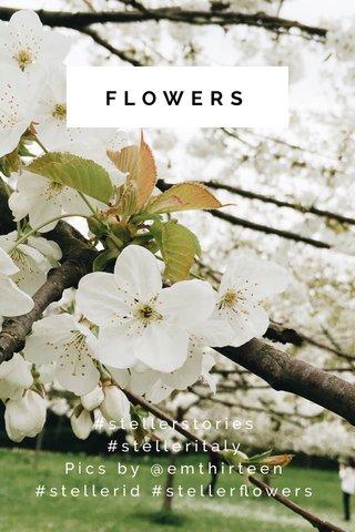 FLOWERS #stellerstories #stelleritaly Pics by @emthirteen #stellerid #stellerflowers