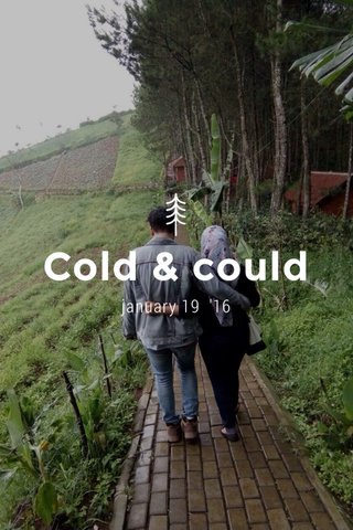 Cold & could january 19 '16