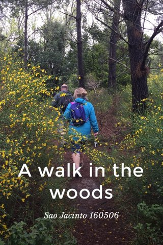 A walk in the woods Sao Jacinto 160506