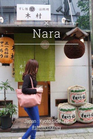 Nara Japan : Kyoto Side Trip #stellerjourney