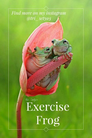 Exercise Frog Find more on my instagram @tri_setyo3