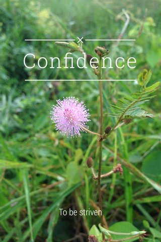 Confidence To be striven