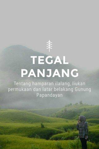 TEGAL PANJANG Tentang hamparan ilalang, liukan permukaan dan latar belakang Gunung Papandayan