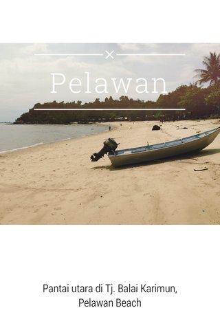 Pelawan Pantai utara di Tj. Balai Karimun, Pelawan Beach