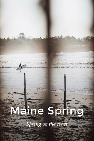 Maine Spring Spring on the coast