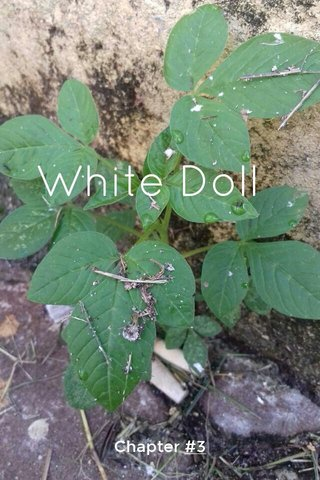 White Doll Chapter #3