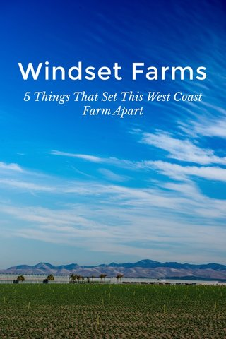 Windset Farms 5 Things That Set This West Coast Farm Apart