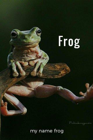 Frog my name frog
