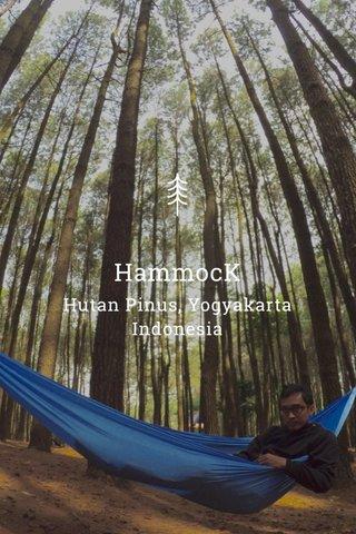 HammocK Hutan Pinus, Yogyakarta Indonesia