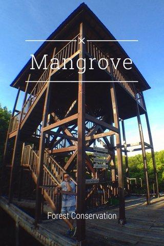 Mangrove Forest Conservation