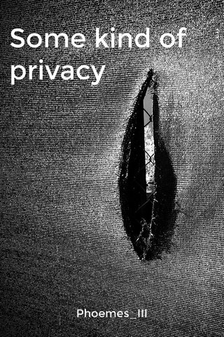 Some kind of privacy Phoemes_III