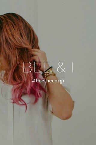 BEE & I #beethecorgi