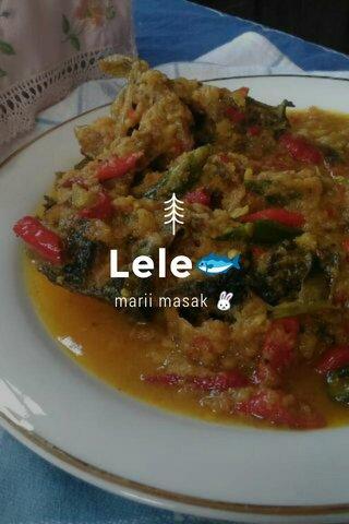 Lele🐟 marii masak 🐰