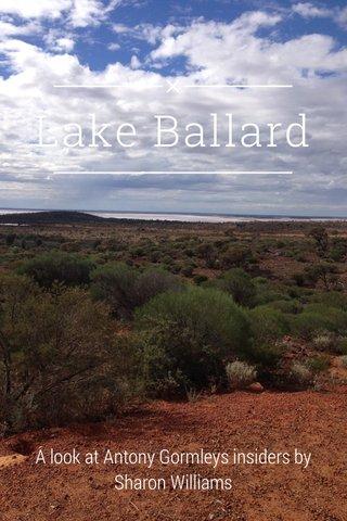 Lake Ballard A look at Antony Gormleys insiders by Sharon Williams