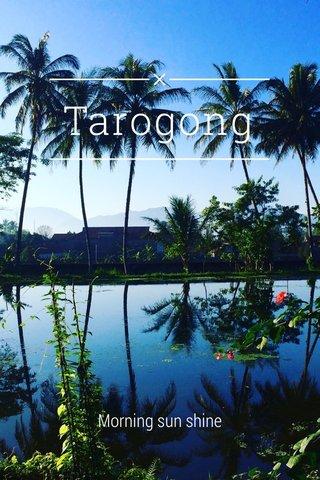 Tarogong Morning sun shine