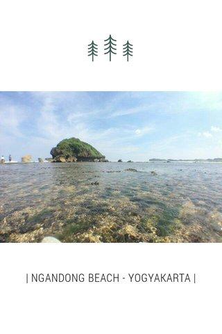 | NGANDONG BEACH - YOGYAKARTA |