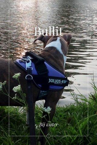 Bullit Bij water