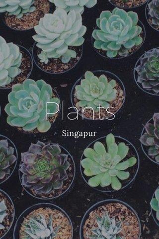 Plants Singapur