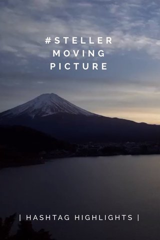 #STELLER MOVING PICTURE | HASHTAG HIGHLIGHTS |