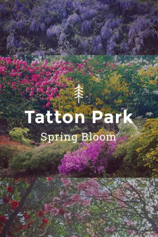 Tatton Park Spring Bloom