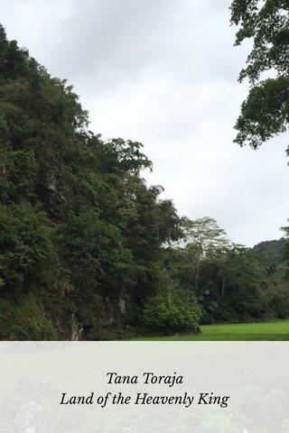 Tana Toraja Land of the Heavenly King