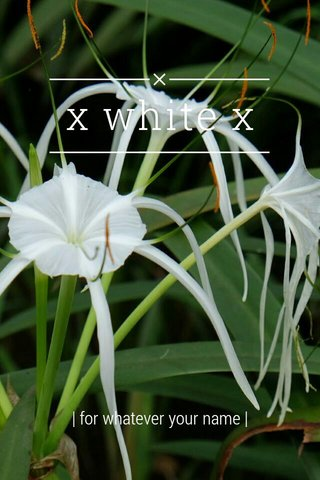 x white x   for whatever your name  