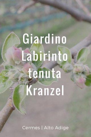 Giardino Labirinto tenuta Kranzel Cermes   Alto Adige