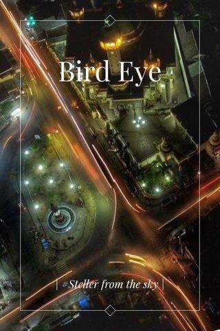 Bird Eye | #Steller from the sky |